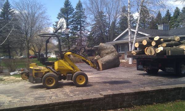 Gehl Loader West Allis Tree Removal