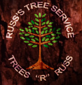 Russ's Tree Service Trees 'R' Russ Muskego, Wisconsin