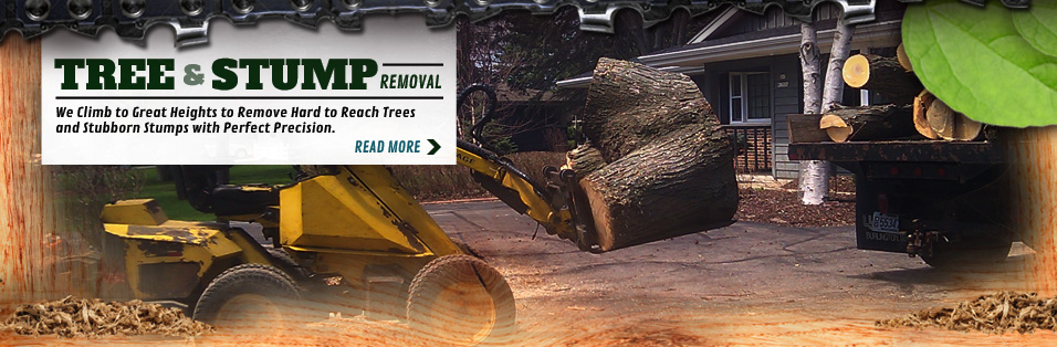 front loader removing tree stumps